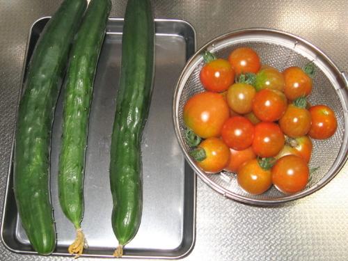 キュウリ、トマト