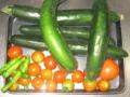 [胡瓜][トマト]胡瓜5本トマトしし唐