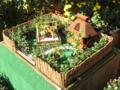 [秋]菊祭り箱庭