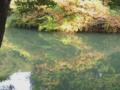 [長池公園][秋]秋の築池