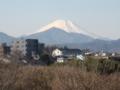 [富士山]久しぶり