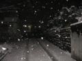 [冬][雪]