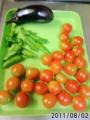 [茄子][トマト]今日の収穫