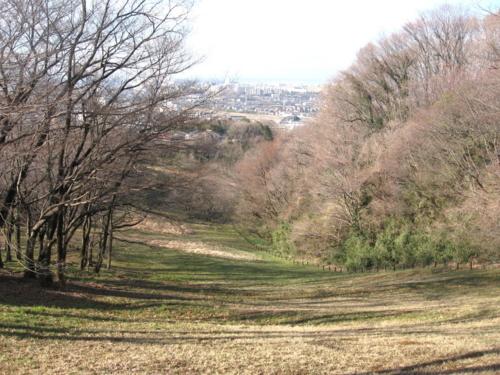 殿ヶ谷の道