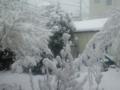 [雪]2月14日再び雪
