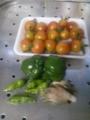 [トマト][初物][初物]今日の収穫(ピーマンは初物)