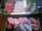 寿司と刺身@角上魚類