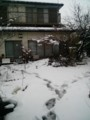 [冬][雪]積雪10cm