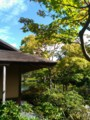[昭和記念公園]日本庭園