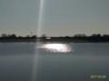 [渡良瀬遊水地][谷中湖]渡良瀬遊水地