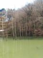 [水]大田切池