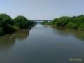[渡良瀬遊水地][水辺]渡良瀬川