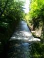 [水辺]根川