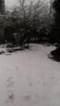 [雪][冬]また雪