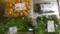 きのこと山菜