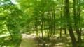 [昭和記念公園]昭和記念公園