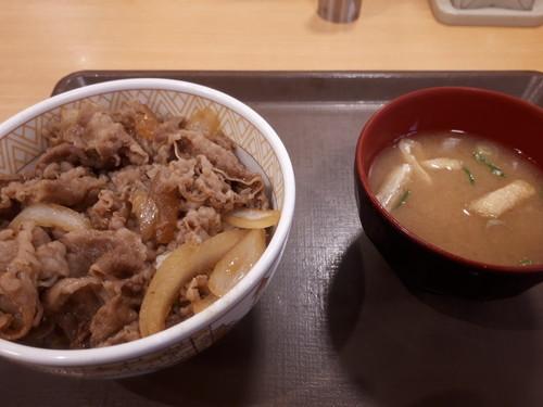 牛丼+味噌汁