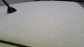 [雪]少し積もった