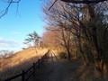 唐木田の道