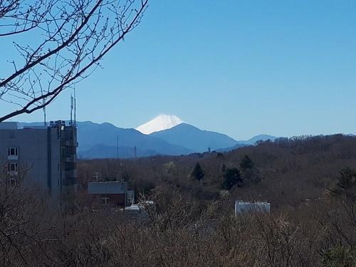 平山城址公園からの富士山