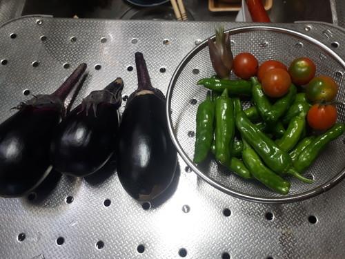 茄子、しし唐、トマト、茗荷(初物)