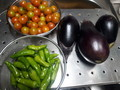 [収穫]茄子+しし唐+トマト