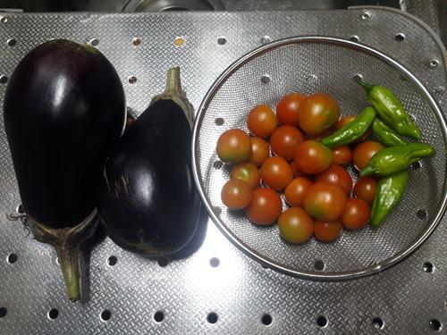 茄子+しし唐+トマト