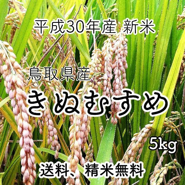 f:id:tottoridekurasu:20181127125600j:plain