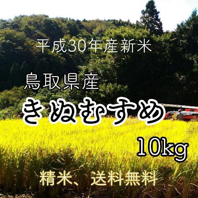 f:id:tottoridekurasu:20181127125611j:plain