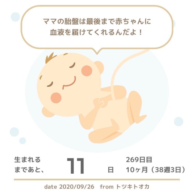 出産予定日