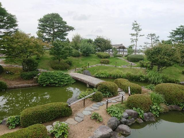 f:id:toukaen-bonsai:20190803110435j:plain