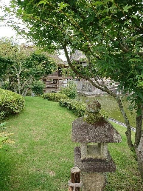 f:id:toukaen-bonsai:20190803113226j:plain