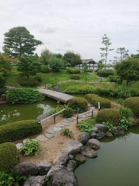f:id:toukaen-bonsai:20190803113359j:plain