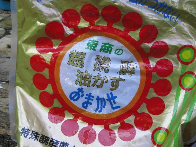 f:id:toukaen-bonsai:20190909121647j:plain
