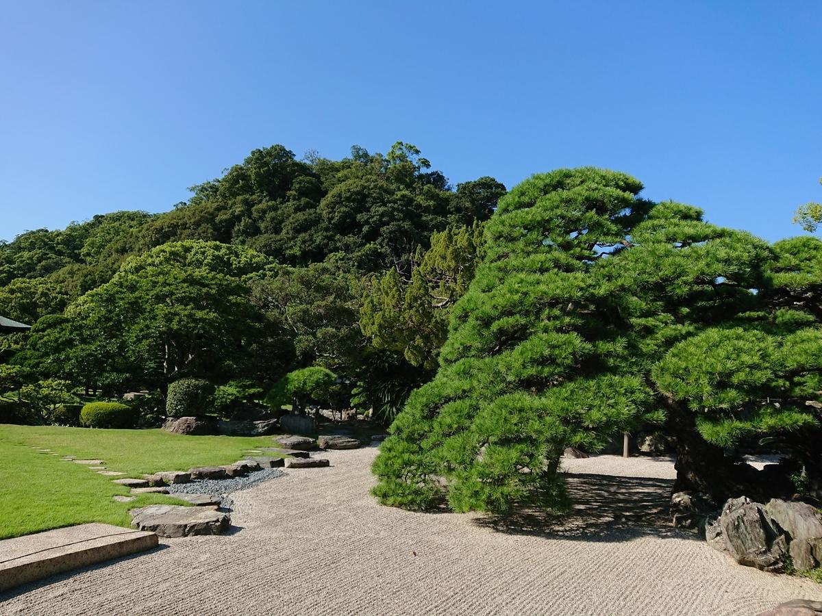 f:id:toukaen-bonsai:20191008163138j:plain