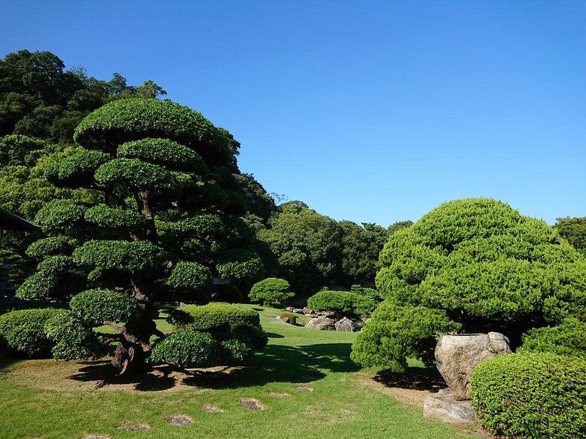 f:id:toukaen-bonsai:20191008163614j:plain