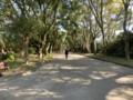 府立植物園は閑静な所だったが紅葉は今一★