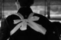 [京都][祭り][スポーツ]気合い(下鴨神社)