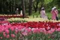 [京都][府立植物園][植物]京都新聞写真コンテスト 一休み