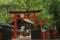 [京都][神社仏閣]