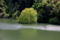 京都新聞写真コンテスト 光の帯