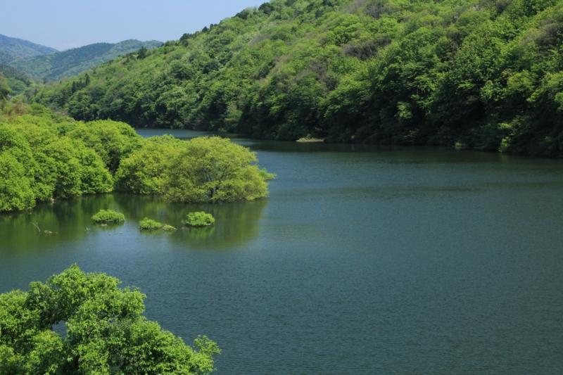 瀬田川を撮影