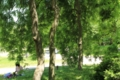 [京都][府立植物園][植物]京都新聞写真コンテスト 癒しの空間
