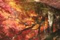 [京都][紅葉]京都新聞写真コンテスト 水辺の紅葉