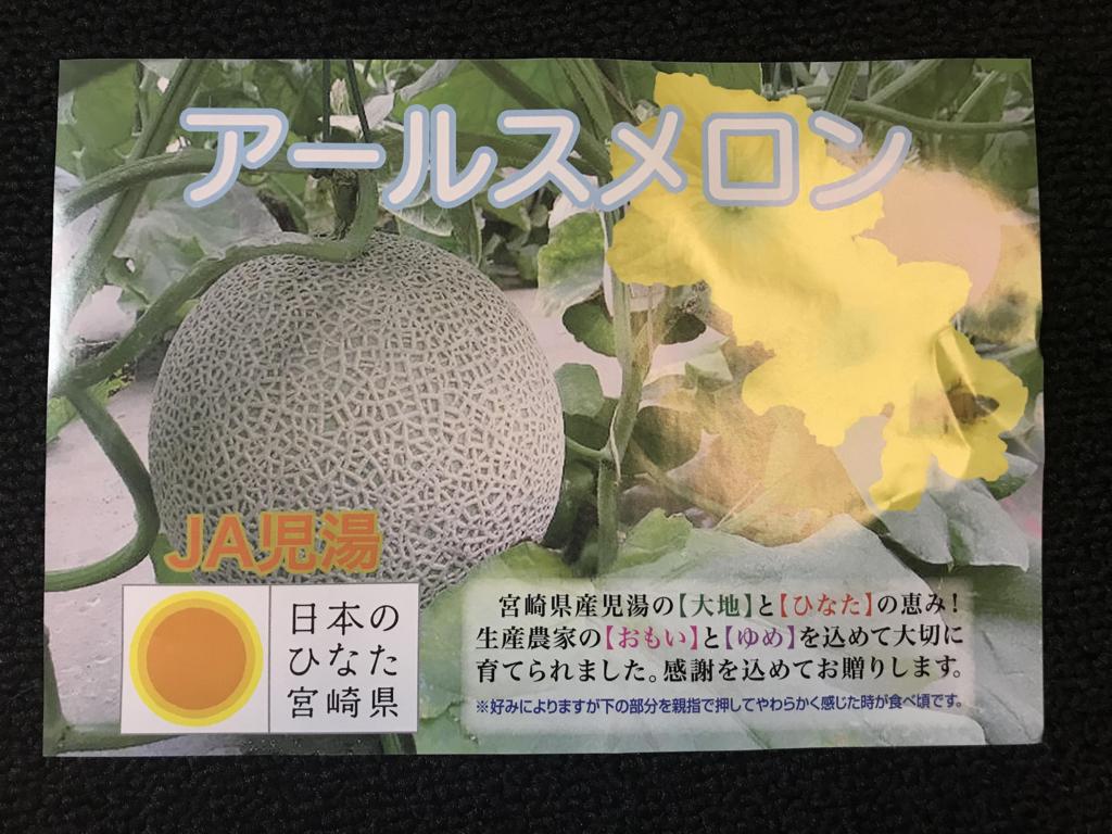 おすすめ ふるさと納税 宮崎県新富町 極上アールスメロン