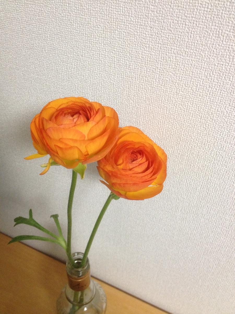 f:id:toutsuki:20190317202235j:plain