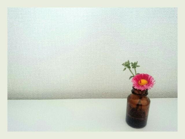 f:id:toutsuki:20190514184622j:image