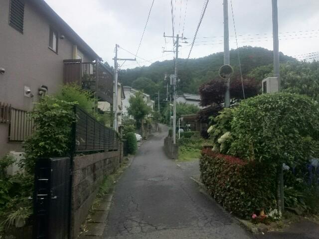 f:id:toutsuki:20190624221931j:plain