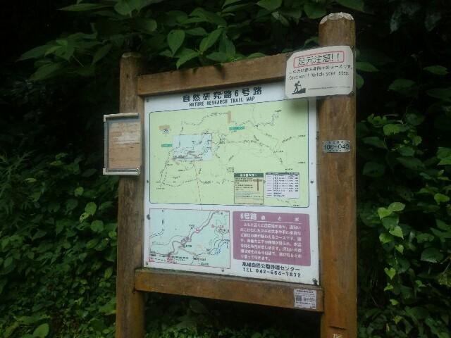 f:id:toutsuki:20190715213013j:plain