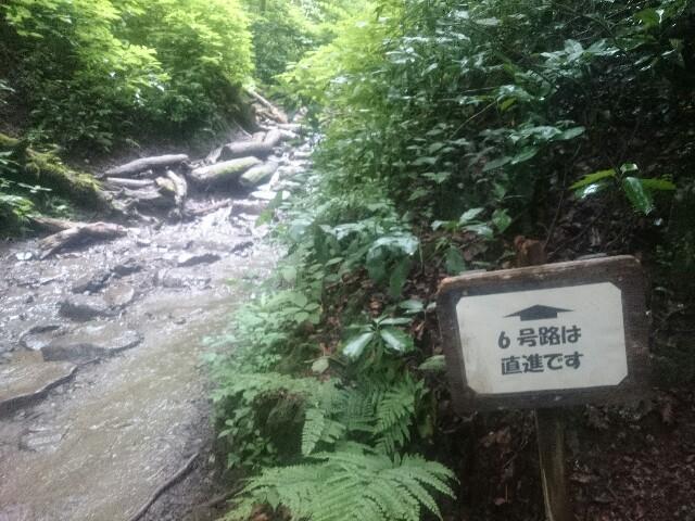 f:id:toutsuki:20190715230308j:image